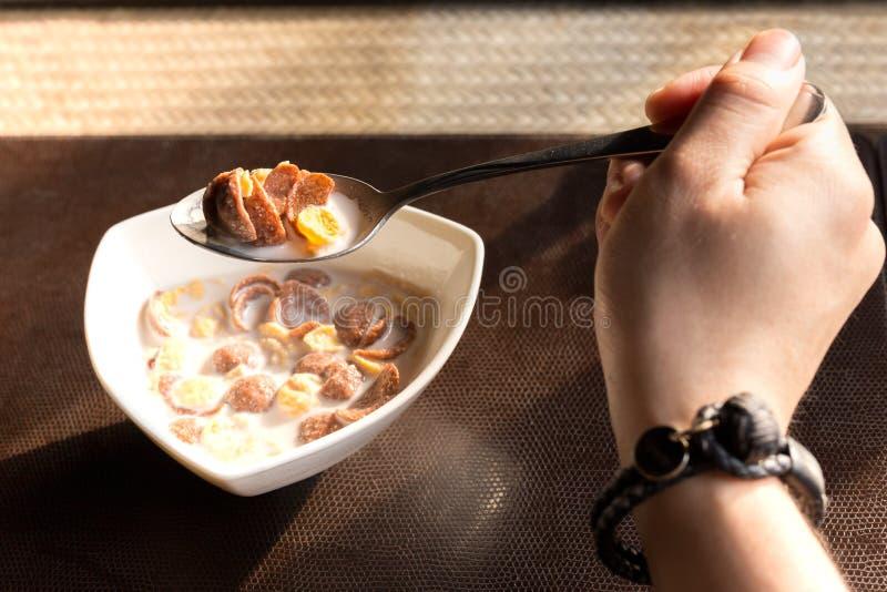 Remettez juger la cuillère pleine des cornflakes et du lait avec la lumière du soleil photos stock