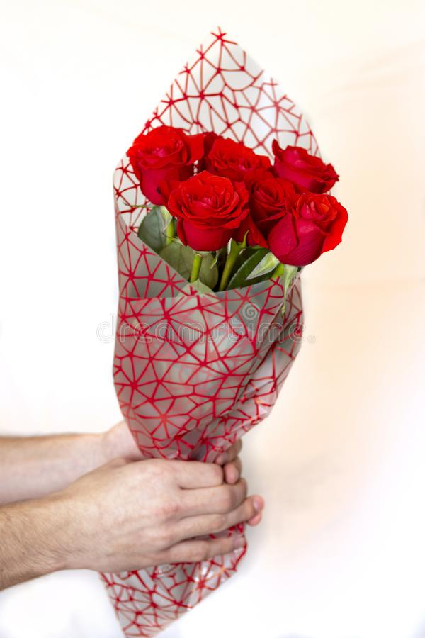 Remettez tenir le bouquet des roses rouges au-dessus du fond blanc photo stock
