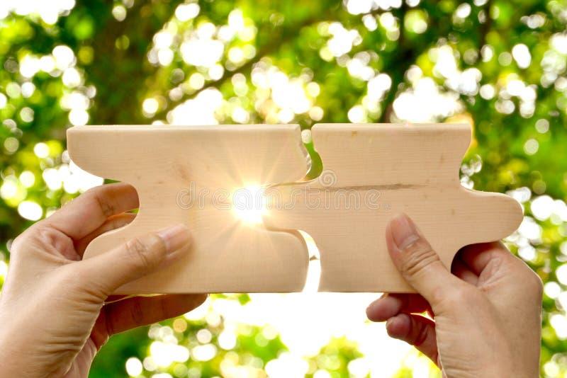 remettez tenir le modèle denteux en bois de texture de morceau sur le backgro de nature image stock