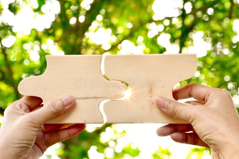 remettez tenir le modèle denteux en bois de texture de morceau sur le backgro de nature photographie stock