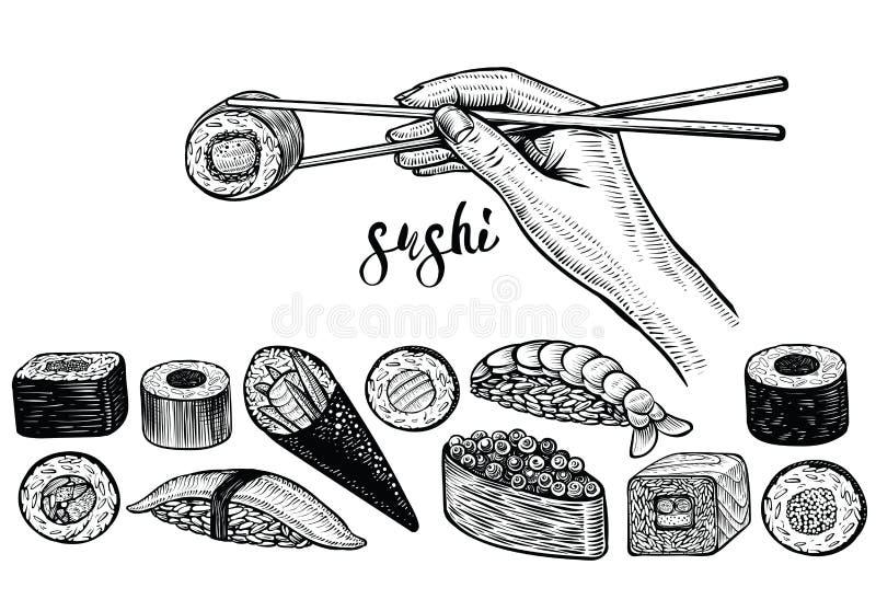 Remettez tenir les baguettes et le petit pain de sushi, dessin au trait vecteur Espèces japonaises de nourriture : maki, nigiri,  illustration de vecteur