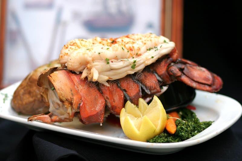 Reminiscing grelhado da lagosta fotos de stock royalty free