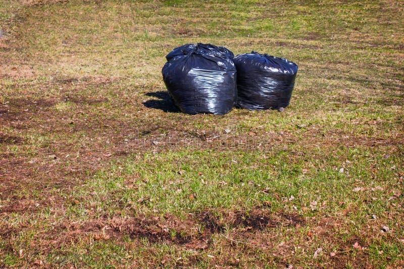 Remoção da folha Sacos de plástico pretos com as folhas secas do ano passado no gramado no parque foto de stock royalty free