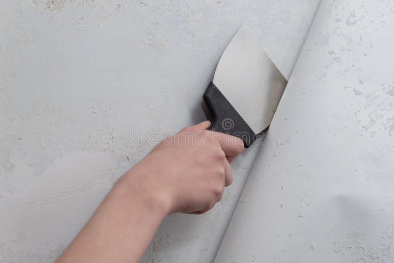 Remoção da parede do papel de parede velho imagem de stock