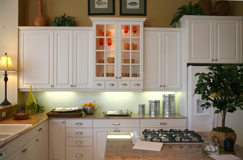 Remodeled Efficient Kitchen royalty free stock photo