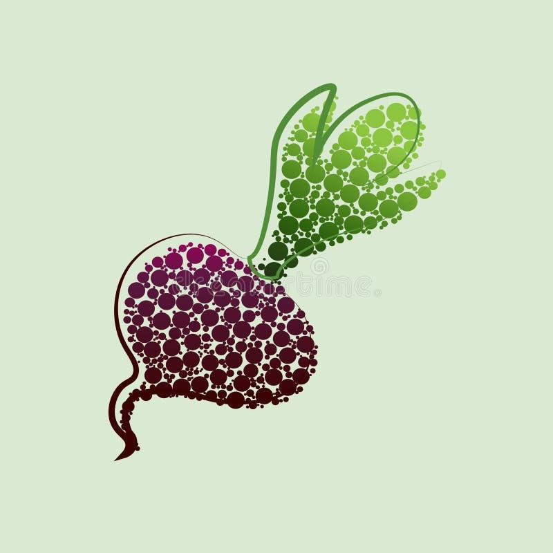 Remolacha del vector Remolachas rojas con las hojas enteras y corte aislado en el fondo blanco stock de ilustración