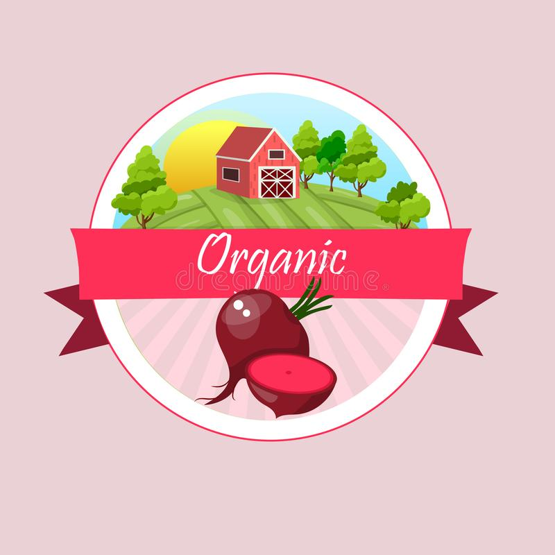 Remolacha roja de las verduras maduras enteras ilustración del vector