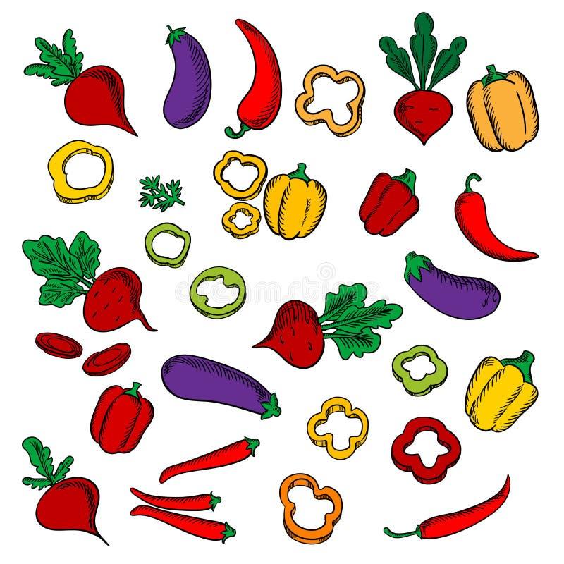Remolachas, berenjenas, chile y paprikas libre illustration