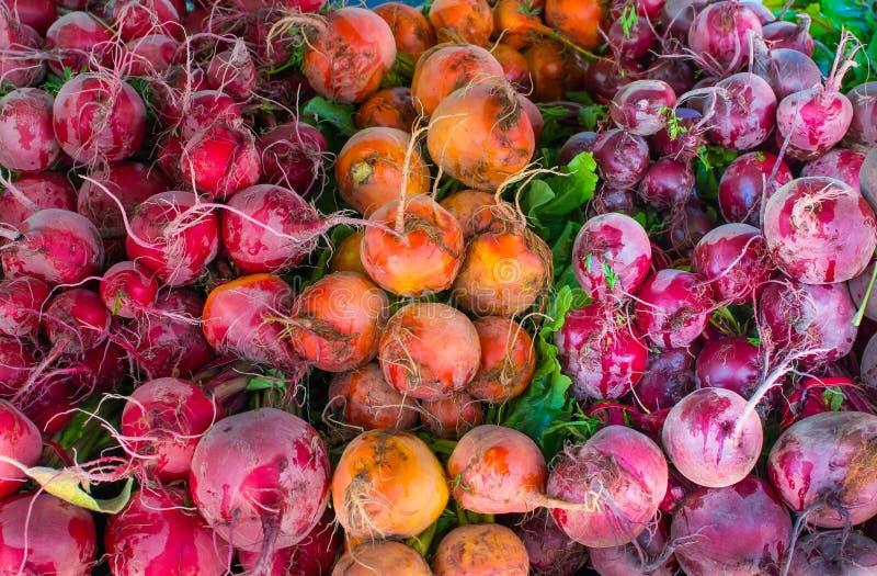 Remolachas coloridas en el mercado del granjero de Hollywood fotos de archivo libres de regalías