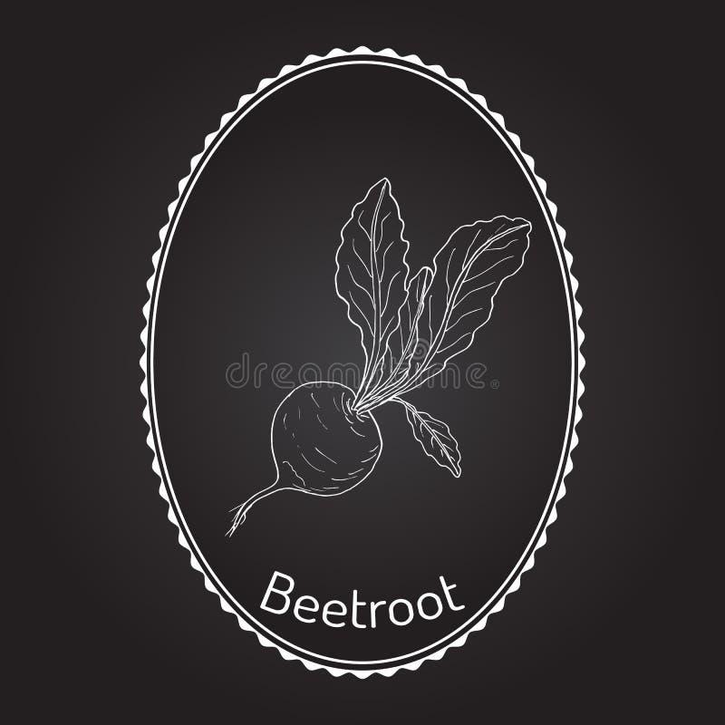 Remolachas con las hojas verdes ilustración del vector