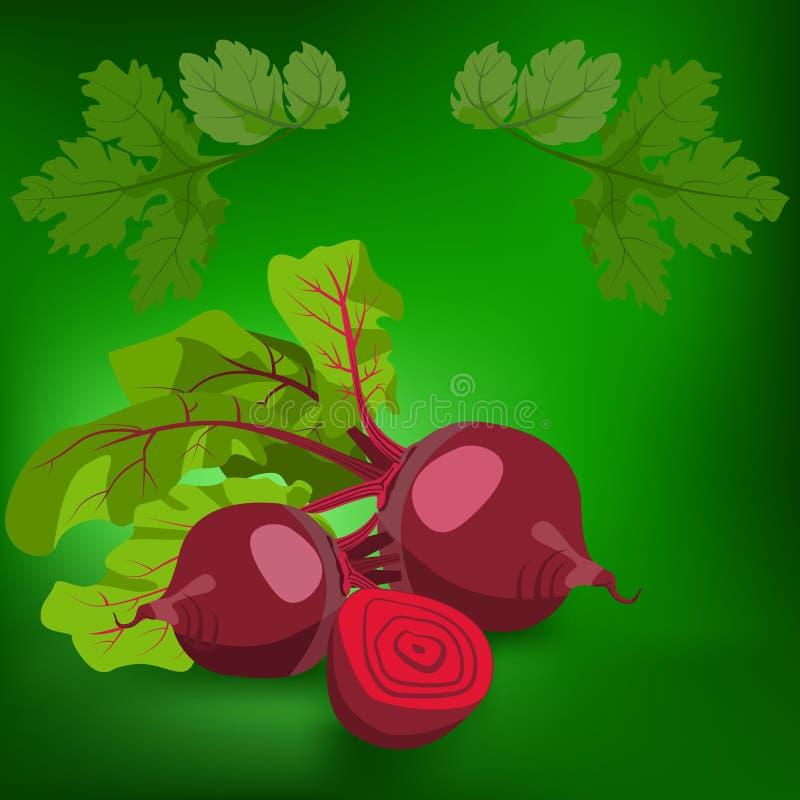 remolachas Lifestile sano stock de ilustración