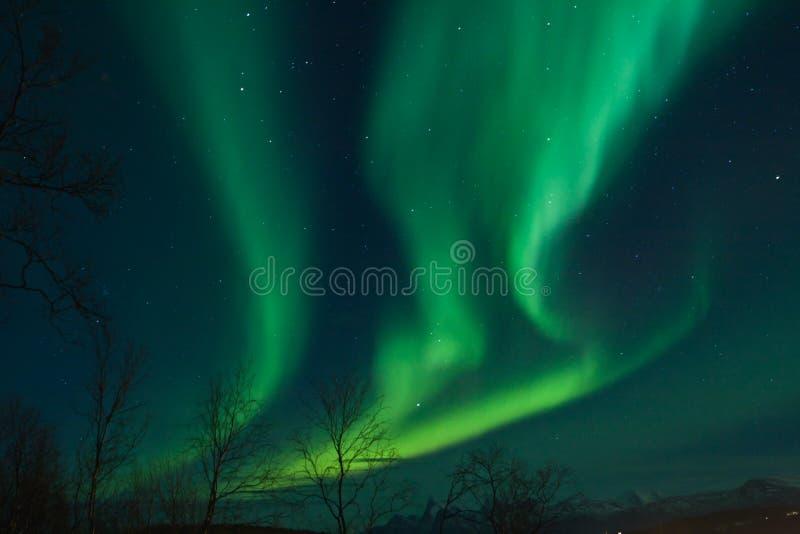 Remolinos de las luces norteñas (aurora Borealis) foto de archivo