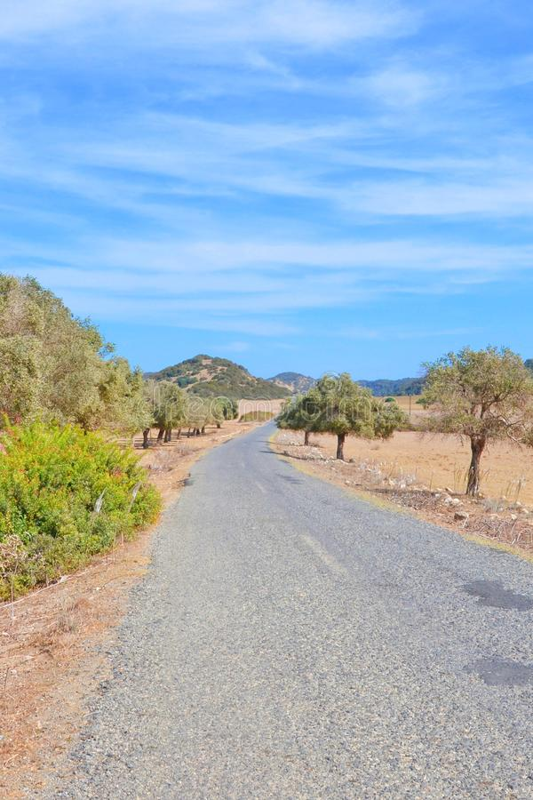 Remote country road surrounded by dried subtropical landscape in Karpas Peninsula, Northern Cyprus royalty free stock photos