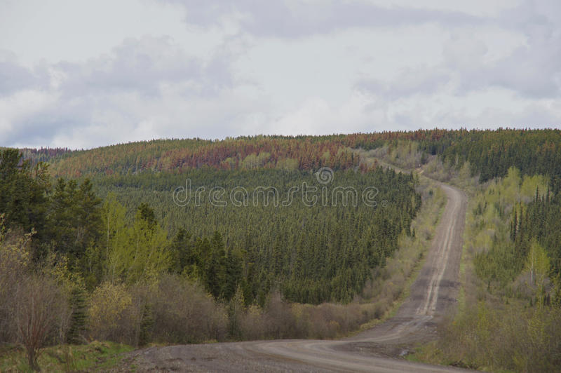 Download Remote Road Alaska Highway Canada Stock Photo - Image of canada, alaska: 51716050
