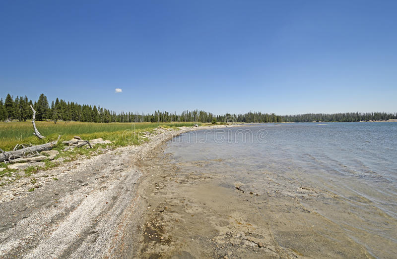 Remote Shore on a Wilderness Lake. On Lewis Lake in Yellowstone National Park in Wyoming royalty free stock photography