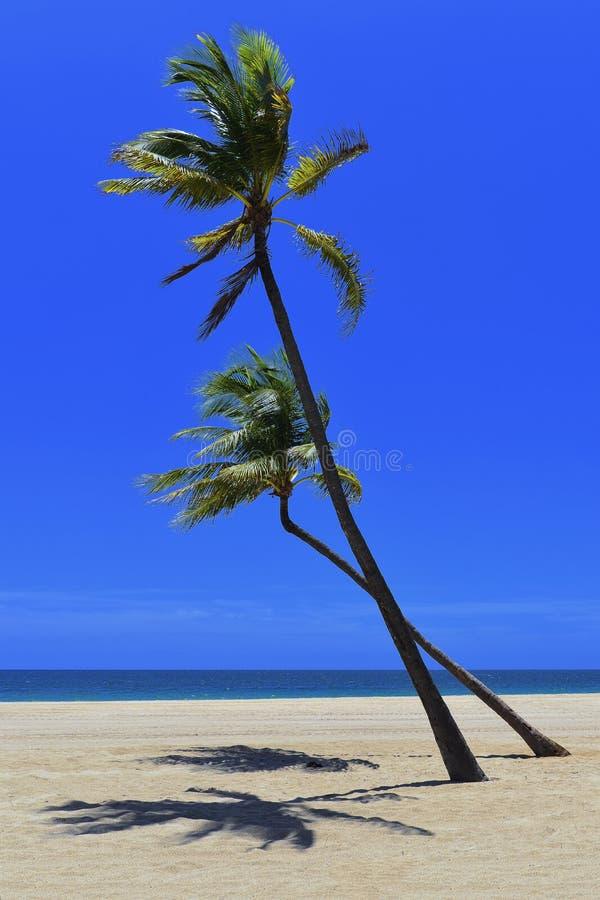 Remote Tropical  Beach Stock Photo