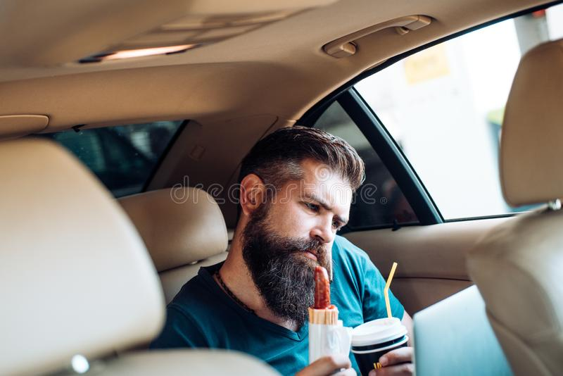 Remote work. coffee time. fast food - hot dog. Bearded man. Mature hipster with beard. Male barber care. brutal hipster stock image
