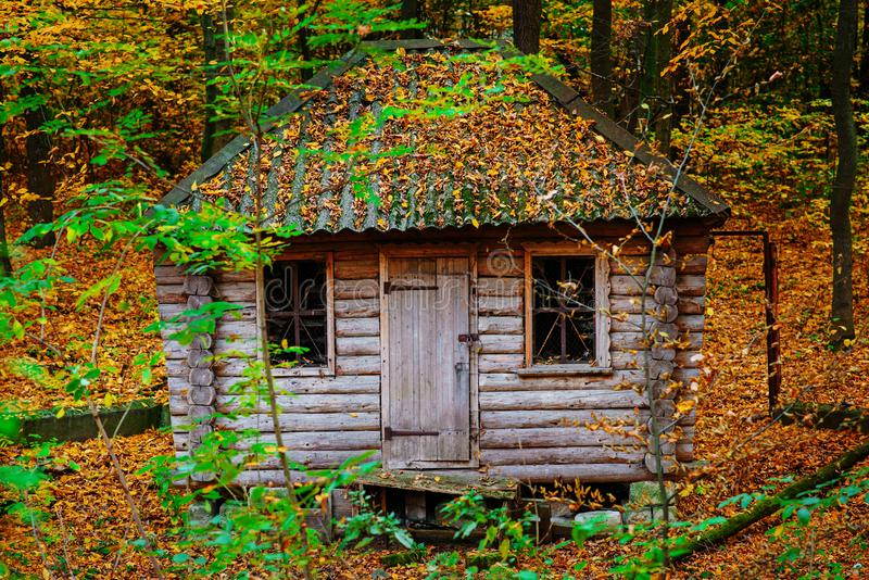Remoted old wooden shack of ranger in autumn forest stock photos