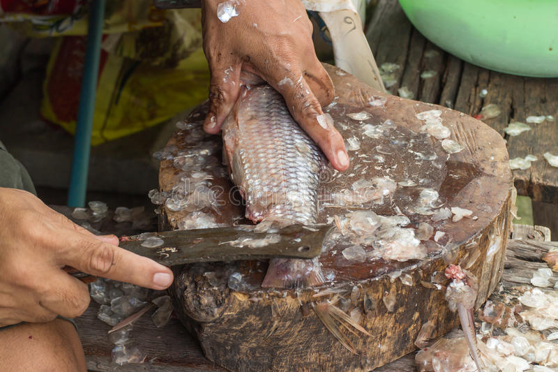 how to clean fish scales