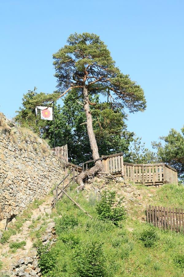 Remparts de pierre de filles de château images libres de droits