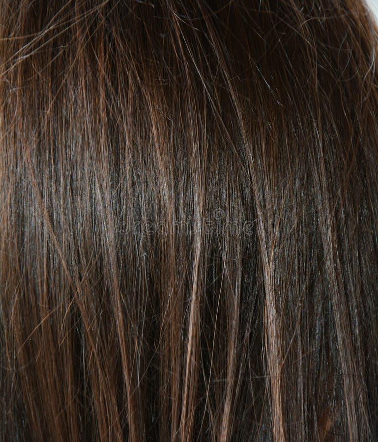 Ren bakgrund för mörkt hår royaltyfri bild