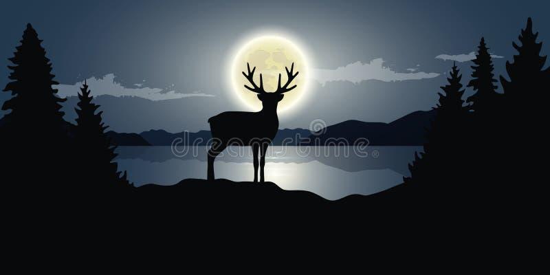 Ren durch das dunkle landsc Natur der wild lebenden Tiere des Vollmonds des Sees Nacht lizenzfreie abbildung