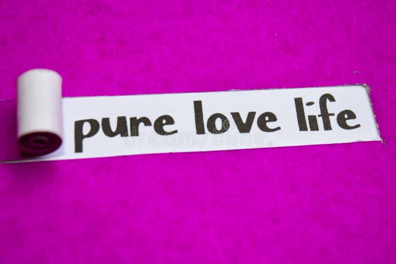 Ren förälskelselivtext, inspiration, motivation och affärsidé på purpurfärgat sönderrivet papper royaltyfri bild