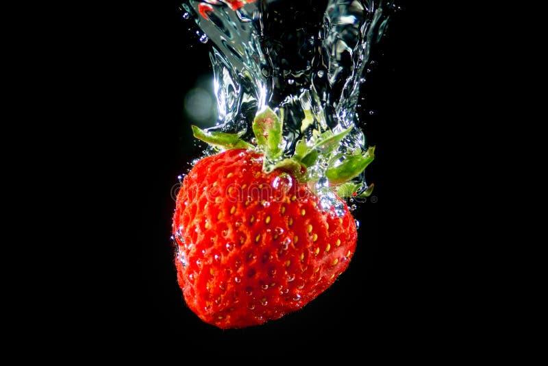 Ren fallande jordgubbe in i vatten royaltyfri fotografi