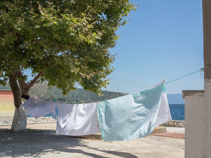 Ren ny tvätteri arkivbild