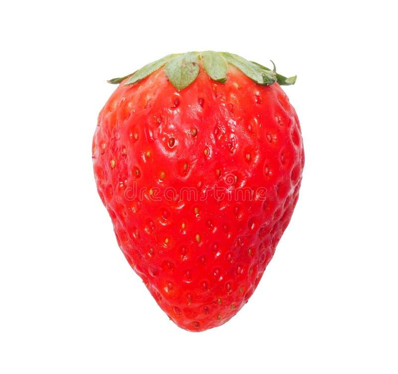 Rena jordgubbar isolerade arkivfoton