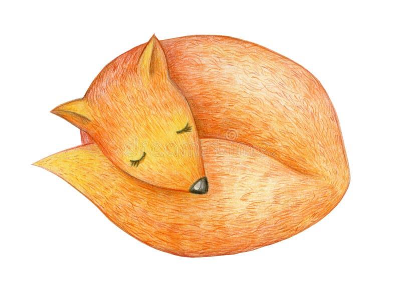 Renard mignon de sommeil illustration stock