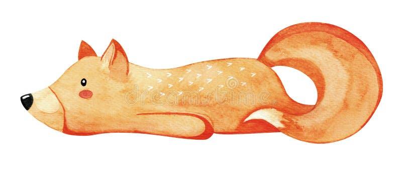 Renard paresseux mignon Renard rouge d'isolement sur le fond blanc watercolor illustration libre de droits