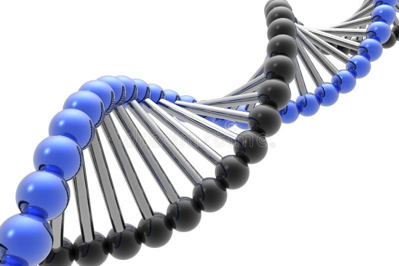 Download Render of DNA stock illustration. Image of image, chemistry - 4781356