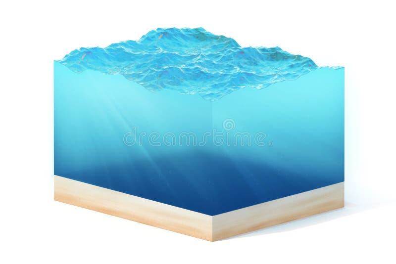 rendição 3d da seção da água limpa do oceano com parte inferior sob a água, isolada no fundo branco fotos de stock royalty free