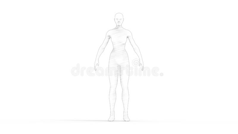 rendição 3D de um modelo de computador da mulher isolado no fundo branco ilustração royalty free