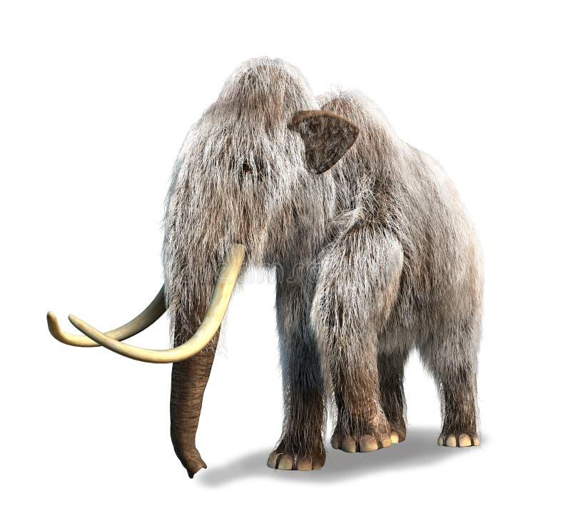 Rendição Photorealistic de 3 D de um Mammoth. ilustração do vetor