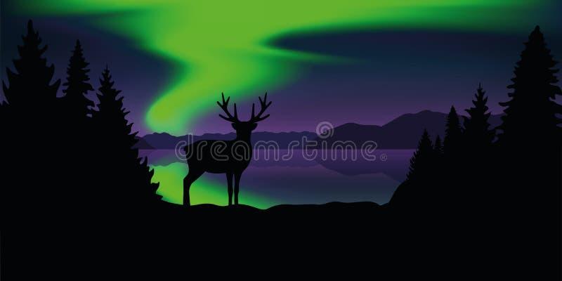Rendier door het meer met mooi groen polair de aardlandschap van het lichtenwild vector illustratie