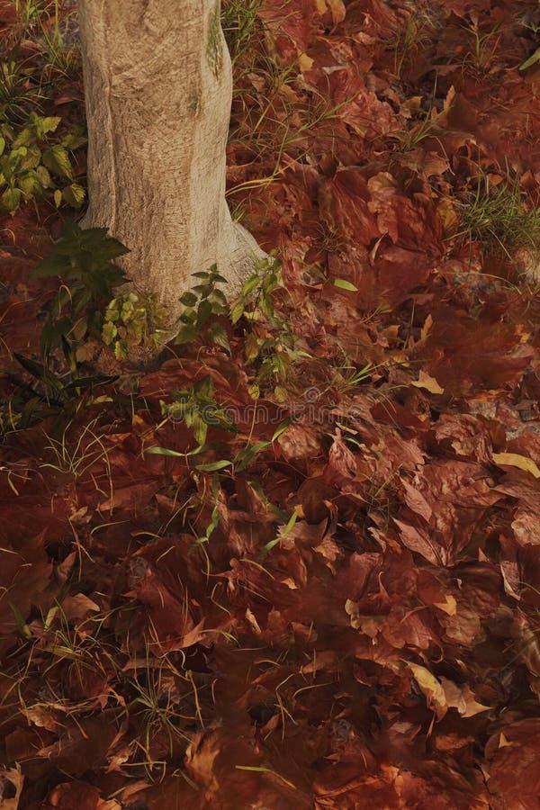 rendu 3d de la terre couvert de feuilles pendant la saison d'automne illustration stock