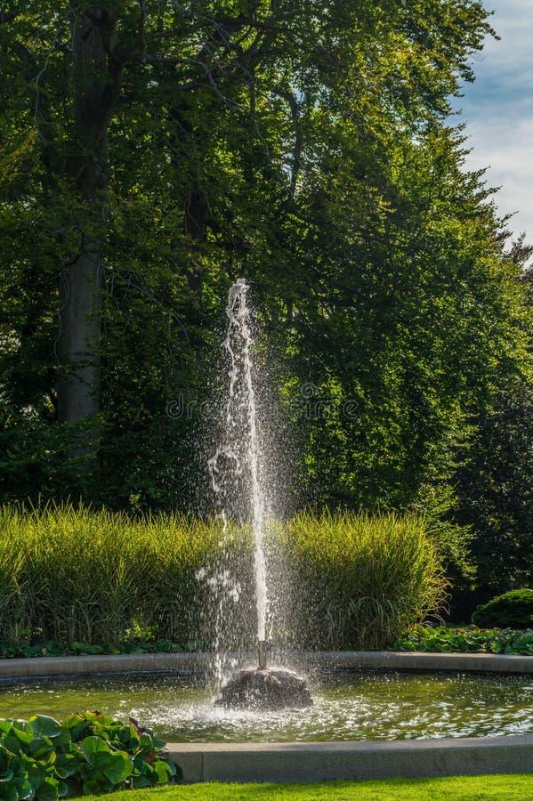 Renesansowa lato głupota królowa Anna w Królewskich ogródach zdjęcia stock