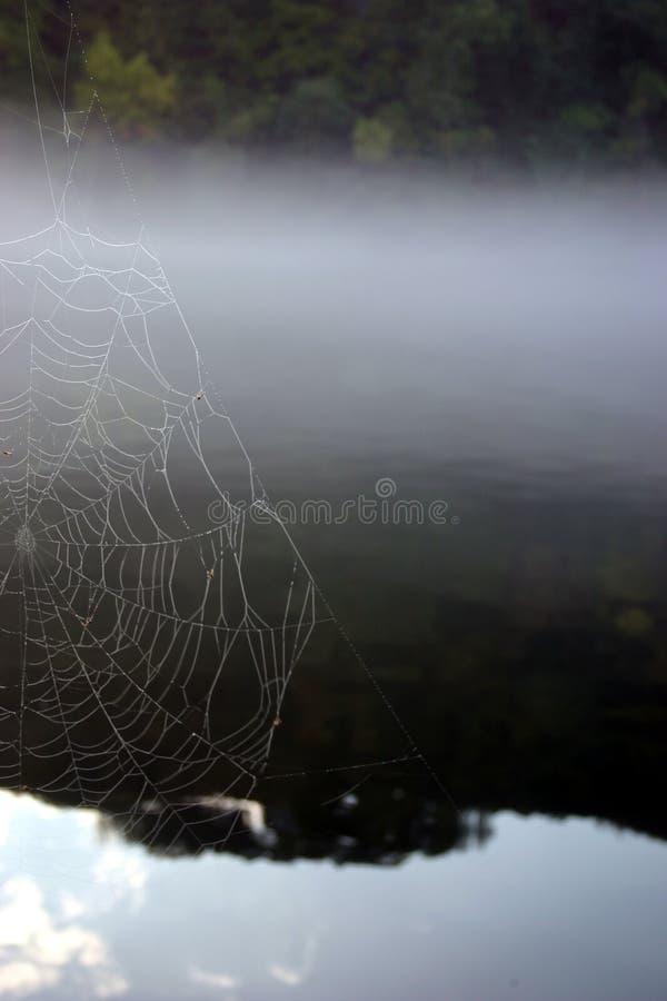 Download Rengöringsduk arkivfoto. Bild av lake, trees, dimmigt, reflexioner - 25894