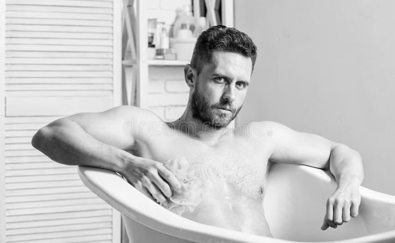 Reng?rande delar f?rkroppsligar egg toilet Sitter den muskul?sa torson f?r mannen i badkar applicera genomskinlig fernissa f?r om arkivbilder