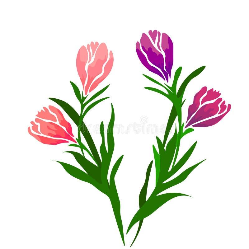 Reng?ringsduk F?rgrik tulpanupps?ttning f?r realistisk vektor bakgrund blommar fj?dern buketten isolerade tulpan vektor illustrationer