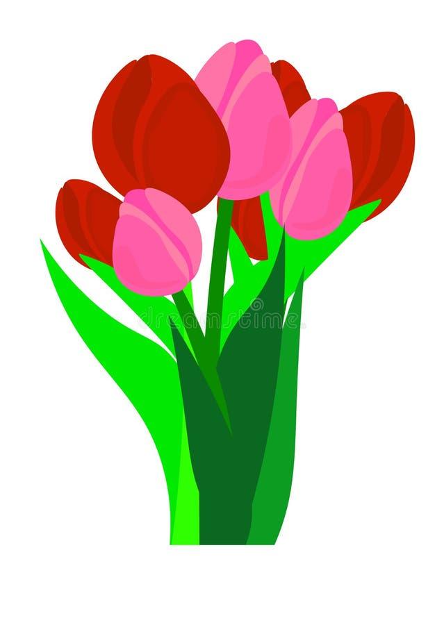 Reng?ringsduk H?lsningkort f?r internationella kvinnors dag Bukett av pappers- klippta den vårblommatulpan och pingstliljan på mö stock illustrationer
