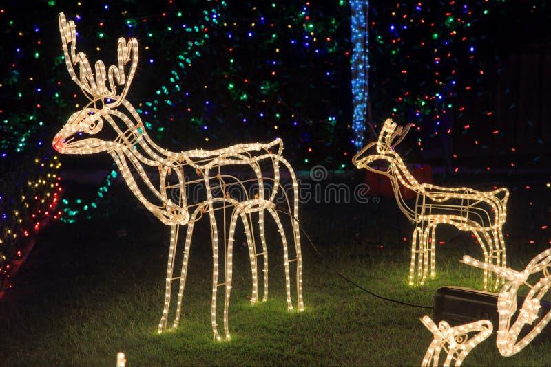 Reniferowych Bożenarodzeniowych dekoracj jaskrawy światło zdjęcie stock