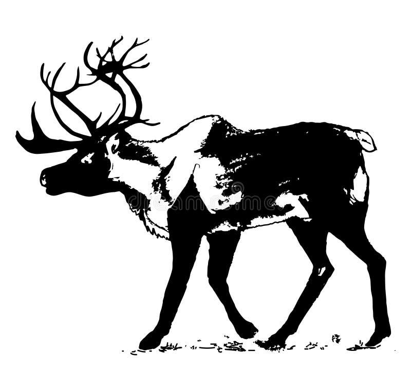Renna (progettazione grafica) royalty illustrazione gratis