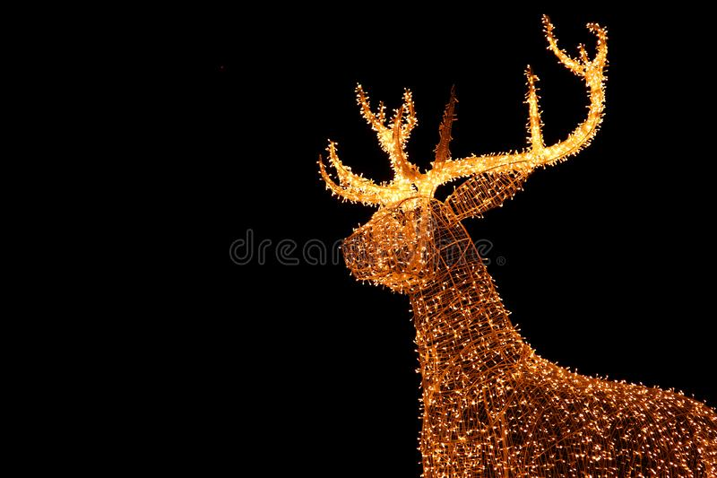 Renne géant lumineux d'or de ficelle de LED de décoration extérieure de Noël contre le ciel nocturne photos stock