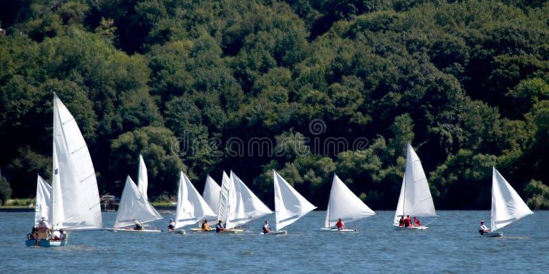 Rennen der kleinen Segelboote lizenzfreie stockbilder