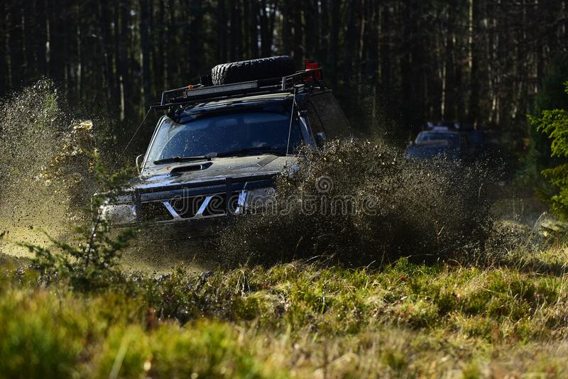 Rennen nicht für den Straßenverkehr auf Fallnaturhintergrund Autolaufen im Herbstwald SUV oder Auto im nicht für den Straßenverke stockbild