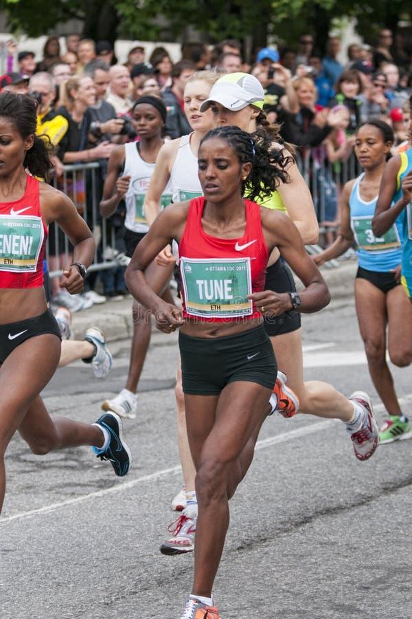 Rennen Ottawa-10km lizenzfreie stockbilder