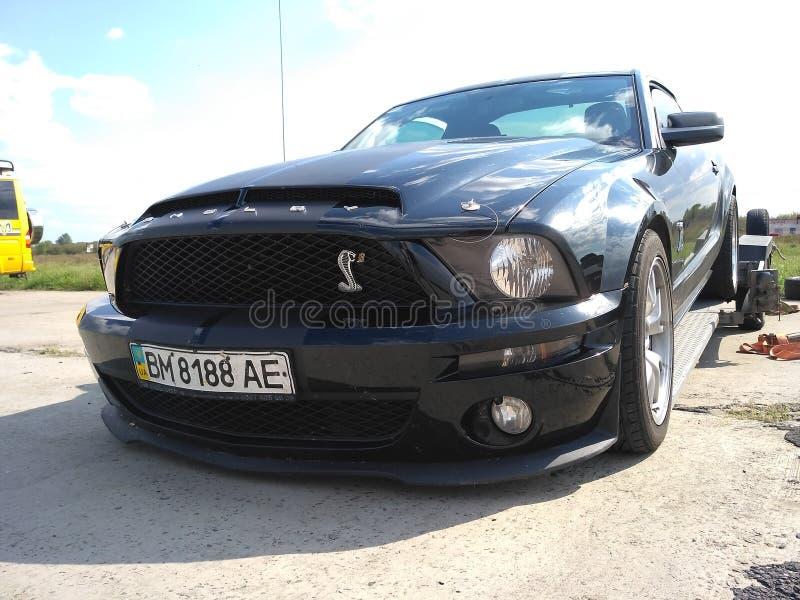 Rennwagenfurt Mustangschwarzes lizenzfreie stockbilder